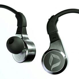DITA(ディータ) DITA Twins Fealty Iridium Silver 【DITA-FEALTY】 高音質 カナル型 イヤホン【送料無料(代引き不可)】 【1年保証】