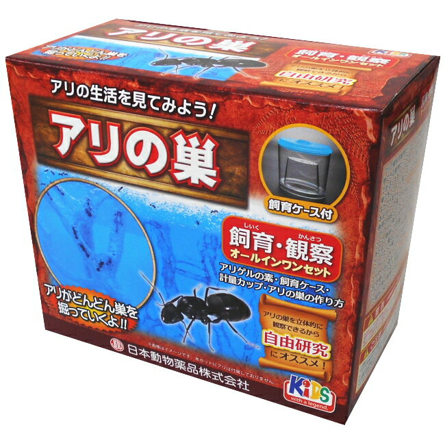 あり観察キット アリ伝説 ニチドウ アリの巣 【あす楽】