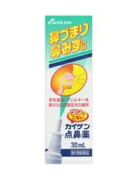 【第2類医薬品】カイゲン点鼻薬(30ml)