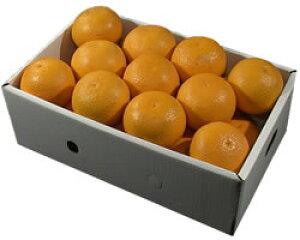 栗山園の清見オレンジ21個(2Lサイズ)約5.4Kg〜6Kg【送料無料(沖縄1000円)】