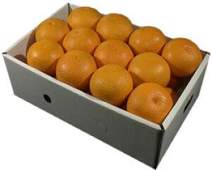 栗山園の清見オレンジ24個(2Lサイズ)約5.4kg〜6kg【送料無料(沖縄1000円)】