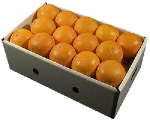 栗山園の清見オレンジ27個(Lサイズ)約5.2Kg〜5.8Kg【送料無料(沖縄1000円)】