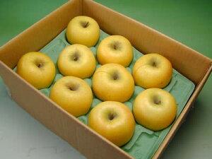 信州 安曇野 あらやファームのりんご シナノゴールド約3kg【送料無料(沖縄は1000円)】