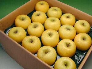 信州 安曇野 あらやファームのりんご シナノゴールド約5kg【送料無料(沖縄は1000円)】
