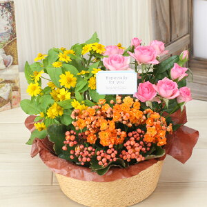 敬老の日花【花かごギフト】3種の花で作る季節の花かごギフト敬老の日