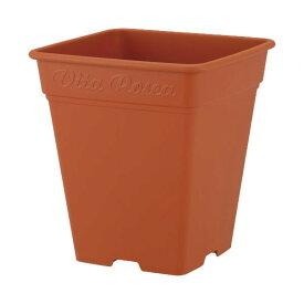 鉢 プラスチック バラ ロゼアスクエア 390型 ブラウン アップルウェアー