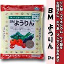 朝日工業 単肥シリーズ 肥料 BM ようりん 2kg(熔成燐肥)