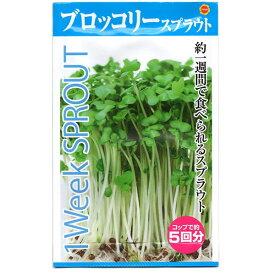 アタリヤ農園 野菜種 スプラウトブロッコリー M