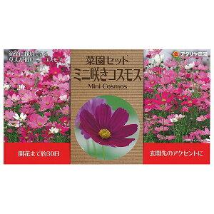 アタリヤ農園 花種 栽培セット ミニ咲コスモス
