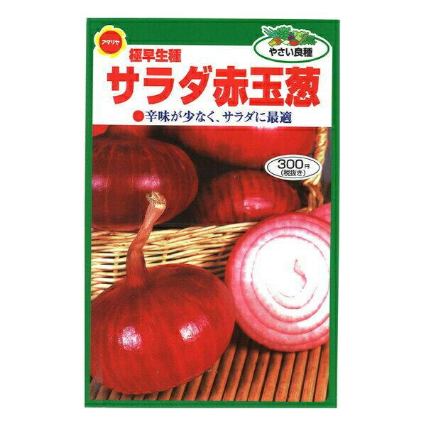 【クーポン配布中】アタリヤ農園 野菜種 サラダ赤玉葱 メール便対応 B13-012