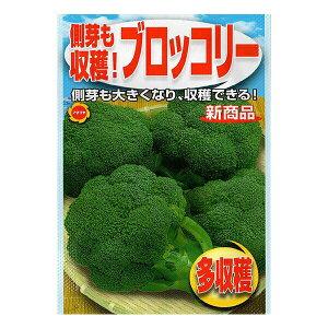 アタリヤ農園 野菜種 ブロッコリー M