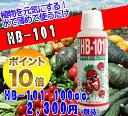 【フローラ】【送料無料】天然植物活力液 HB-101 100cc キープフラワー10ml2個おまけ付き♪