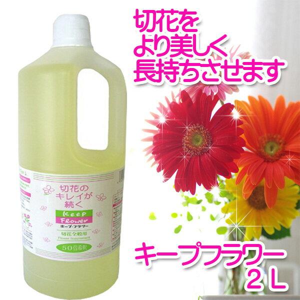 【クーポン配布中】フジ日本精糖 切花栄養剤 切花延命剤 キープフラワー 2L