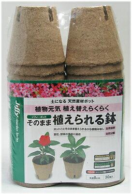 サカタのタネ ジフィー そのまま植えられる鉢 丸型8cm 30個