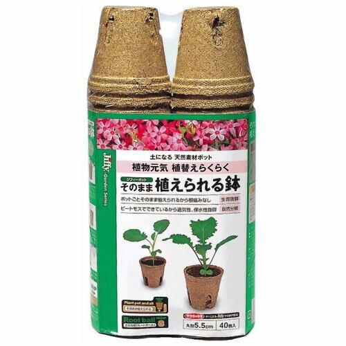 サカタのタネ ジフィー そのまま植えられる鉢 丸型5.5cm 40個