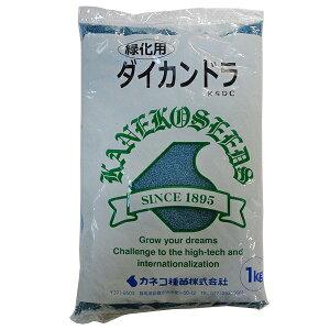 カネコ種苗 緑肥種 ダイカンドラ 1kg