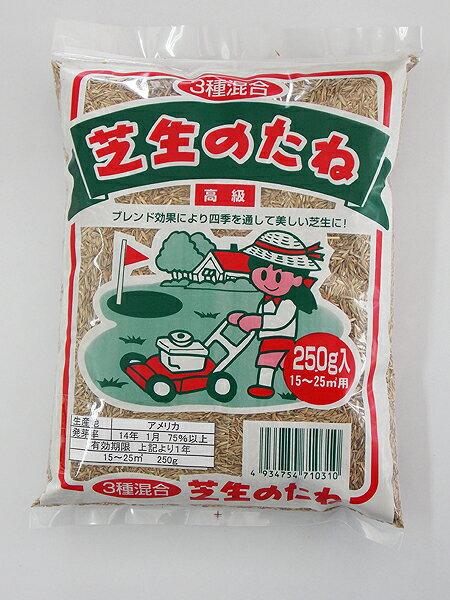 【クーポン配布中】3種混合 高級芝生の種 250g入り(15〜25平方メートル用)