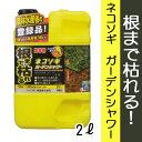 レインボー薬品 除草剤 ネコソギガーデンシャワー 2L