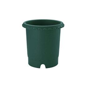 鉢 プラスチック バラ バラ鉢 8号 ダークグリーン リッチェル