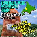 【北海道由仁町産】【種芋】きたあかり SSサイズ:1kg