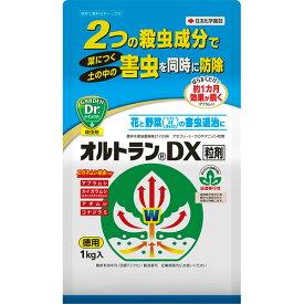 殺虫剤 害虫 オルトラン オルトランDX粒剤 1kg 住友化学園芸