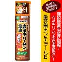 【住友化学園芸】【殺虫剤】園芸用キンチョールE 420ml