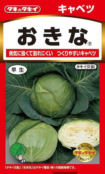 【クーポン配布中】タキイ種苗 野菜種 キャベツ[おきな(早生)] メール便対応 (B01-049)