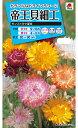 【メール便対応】【タキイ種苗】【花種】帝王貝細工 モンストロサ混合(FTK110)