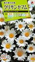 【メール便対応】【タキイ種苗】【花種】クリサンセマム パルドサムスノーランド(FCR127)