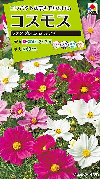 タキイ種苗 花種 コスモス ソナタ プレミアムミックス メール便対応 (B03-051)