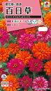 【スーパーSALE対象】【クーポン配布中】タキイ種苗 花種 百日草 ザハラ ダブルデュオミックス メール便対応 (B05-049)
