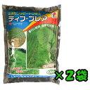 【タキイ種苗】【芝種】【センチピードグラス】ティフ・ブレア 500g 2袋セット
