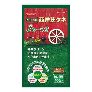 タキイ種苗 芝種 芝草 家庭園芸用西洋芝 J・ターフ2 スタンドパック