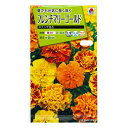 タキイ種苗 花種 フレンチマリーゴールド ボナンザ混合 B03-078 M