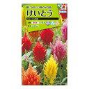 タキイ種苗 花種 けいとう キャッスル混合 B03-038 M