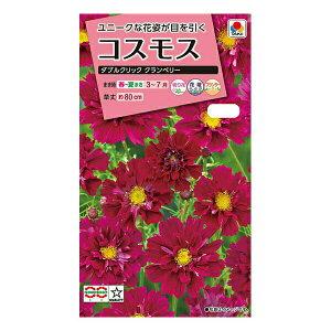 タキイ種苗 花種 コスモス ダブルクリック クランベリー M