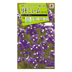 タキイ種苗 花種 リモニューム (スターチス)ディープブルー M