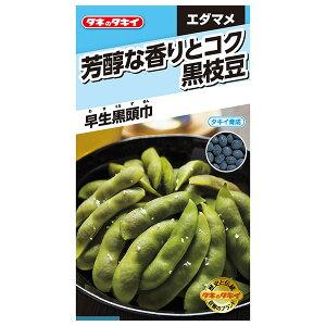 タキイ種苗 野菜種 芳醇な香りとコク 黒枝豆 早生黒頭巾 M