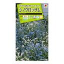 タキイ種苗 金盞花 シノグロッサム チルアウト M