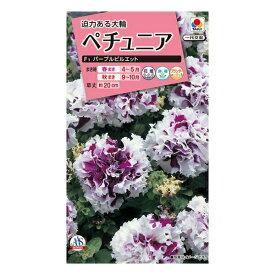 タキイ種苗 花種 ペチュニア F1 パープルピルエット M