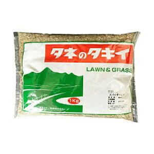 タキイ種苗 芝種 トールフェスク スパイダーLS 1kg