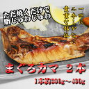 マグロカマ×2コバーベーキューに魚!1尾に2つしかない貴重なカマです【あす楽】