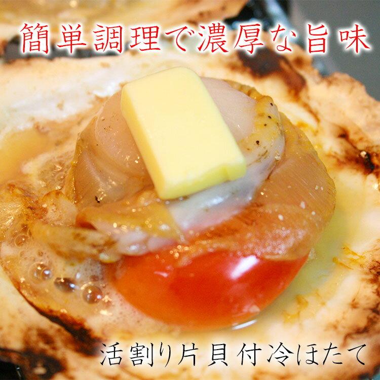 大粒片殻付ほたて10枚約900g入 殻付だから調理も簡単、見た目も豪華 鮮度抜群だから焼くだけでプリップリ食感【あす楽対応】