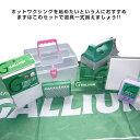 【型落ち在庫処分】GALLIUM ガリウム トライアルキット WAXセット【JSBCスノータウン】