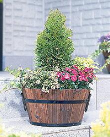 焼杉メッシュプランター浅型 YMA-300ガーデニング 園芸 家庭菜園 植木鉢 花鉢 プランター アイリスオーヤマ