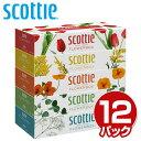 スコッティ (SCOTTIE) ティッシュペーパー フラワーボックス 320枚(160組)5箱×12パック(60箱) 41270 ティシュペーパ…