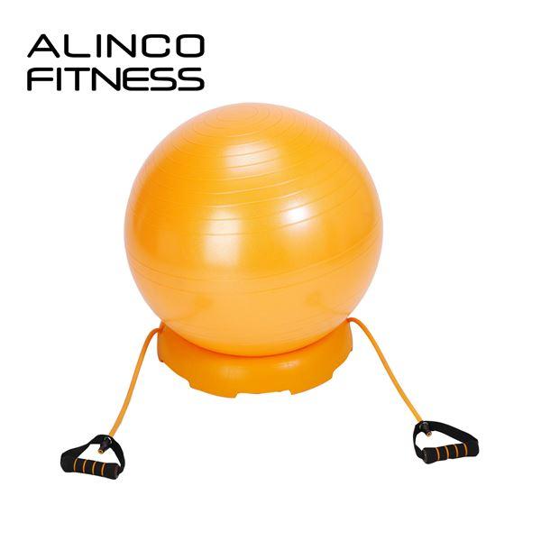 エクササイズボール 55cm セット(ボール、固定台、チューブセット)エアポンプ付 EXG124DX オレンジ バランスボール フィットネスボール ヨガボール 55cm アルインコ ALINCO【送料無料】
