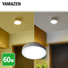 LEDミニシーリングライト 白熱電球60W相当 MLC-101 天井照明 LEDライト 照明器具 LEDシーリング 玄関 廊下 トイレ 山善 YAMAZEN【送料無料】