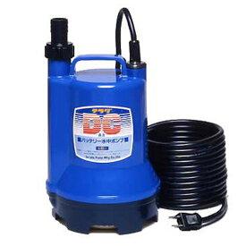 バッテリー 水中ポンプ S24D-100 DC24V 小型 清水 海水用 船舶用品 いけす 生簀 汚水用ポンプ 小型ポンプ 寺田ポンプ 【送料無料】【あす楽】