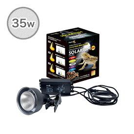 ソラリウム 35Wセット (メタルハライドランプ+共通安定器+専用ソケット) 35W ランプ 交換球 ソケットセット ゼンスイ 【送料無料】